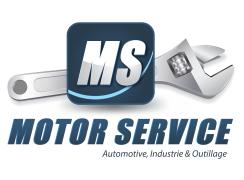 ms-logo-head